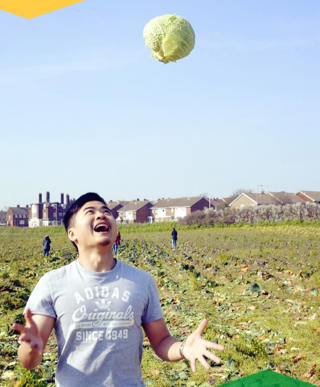 Happy man in a farm field throwing cabbage into the air